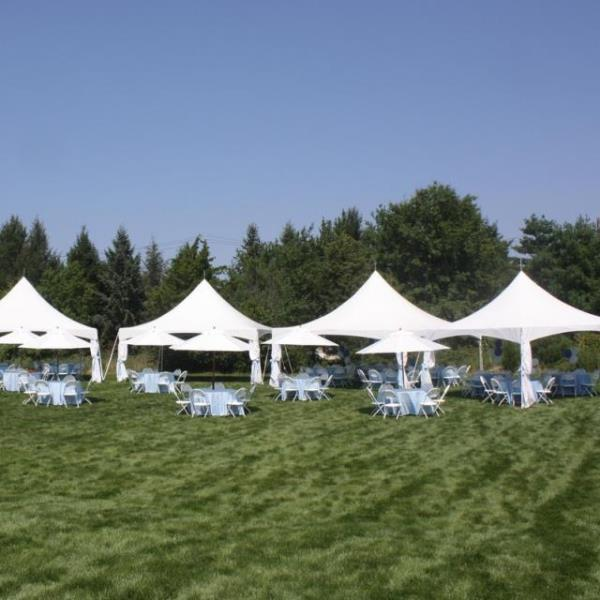 Where to find HIGH PEAK FRAME TENTS in Hamilton